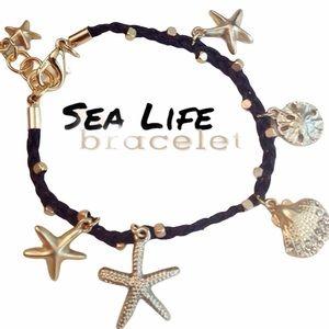 3 for 15🎀Black starfish seashell charm bracelet
